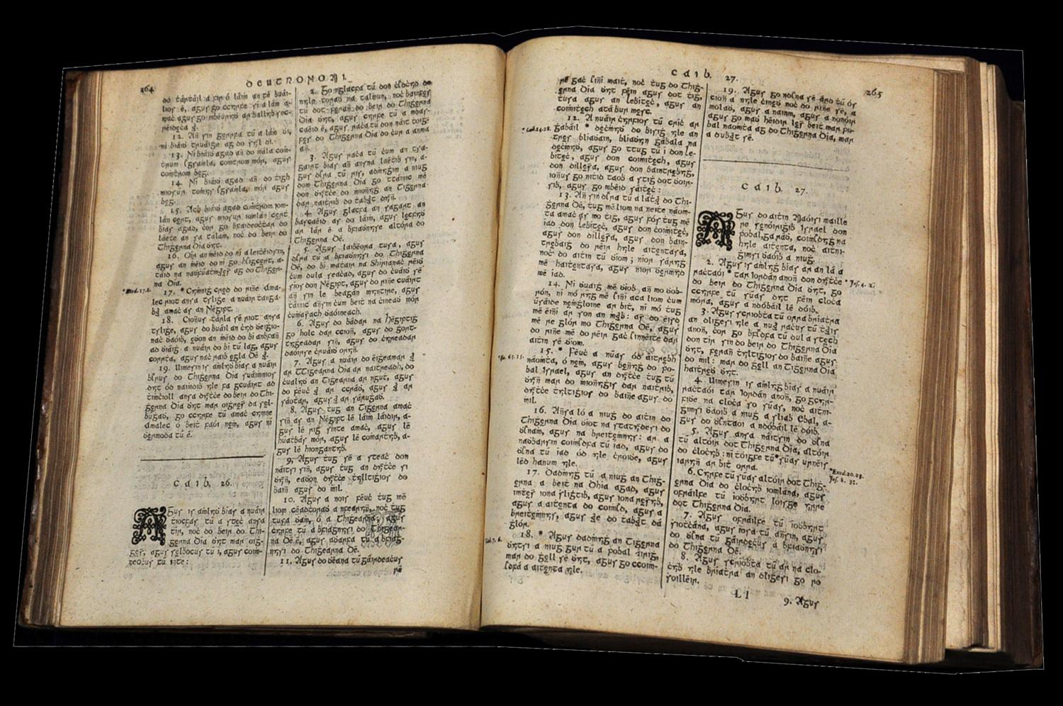 translation of the old testament into irish in templeport